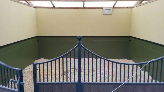 coating paardestal wanden